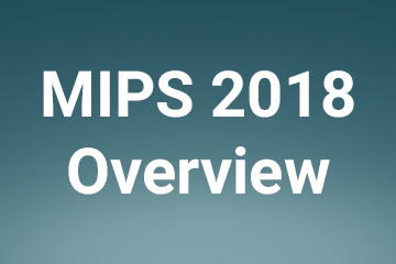 WCH Mips Overview